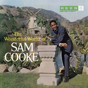 vinil-sam-cooke-the-wonderful-world-of-sam-cooke-importado-vinil-sam-cooke-the-wonderful-world-of-00018771862512-00001877186251